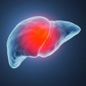 Bergamot i divlja artičoka za zdravlje jetre