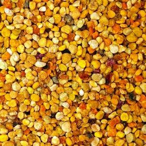 Pčelinja pelud - riznica prirodnih metabolita