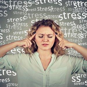 Probiotikom protiv stresa i tjeskobe